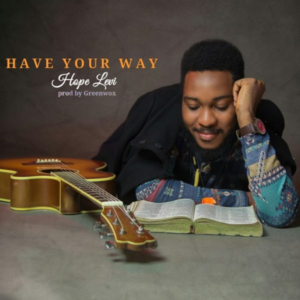 Download Music Have your way by Hope Levi