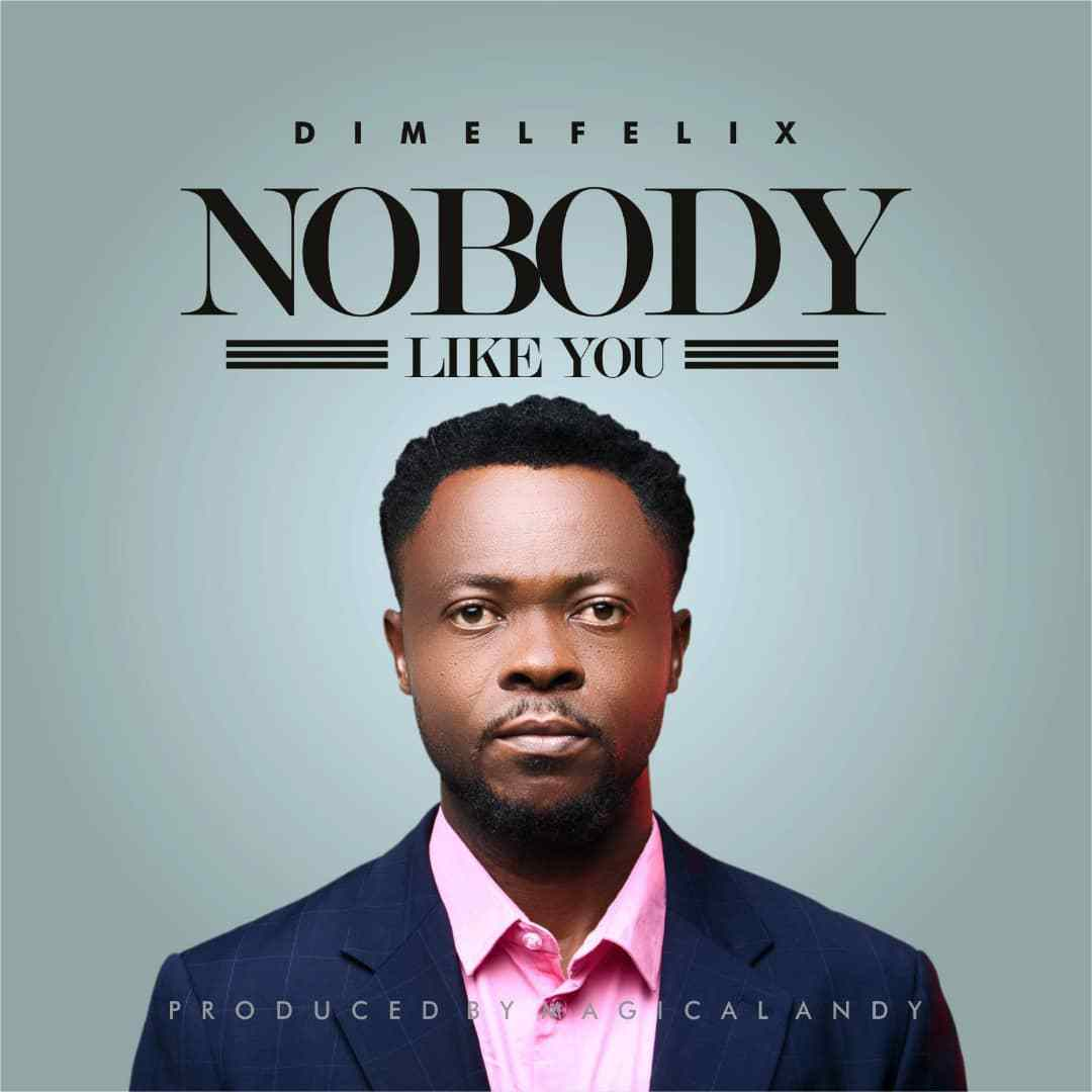 Download Music Nobody like you Mp3 By Dimel Felix
